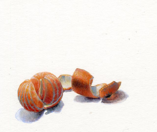 , 'Tangerine,' 2019, Louis K. Meisel Gallery