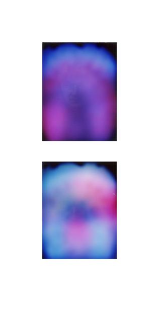 Francesca Grilli, 'Golden Age_Tys_#1#2', 2015, Photography, Polaroids, color, Umberto Di Marino