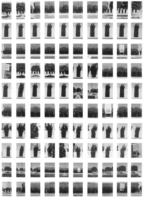 , 'SV016/80 FAA Along Imperial Boulevard, August 1980,' 1980, ROSEGALLERY