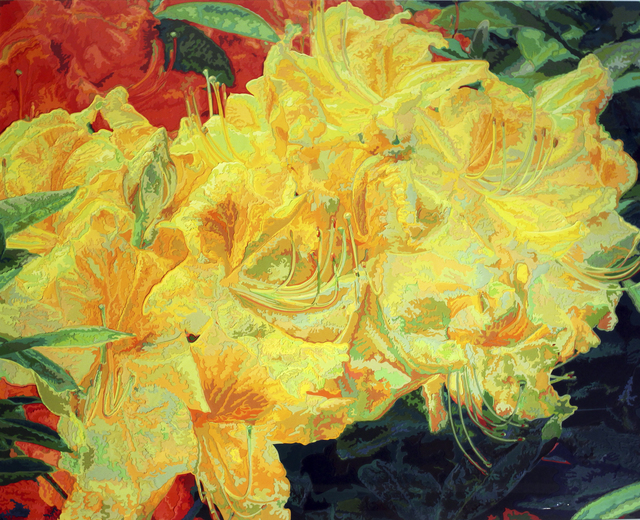 , 'May Radiance,' , Woodward Gallery