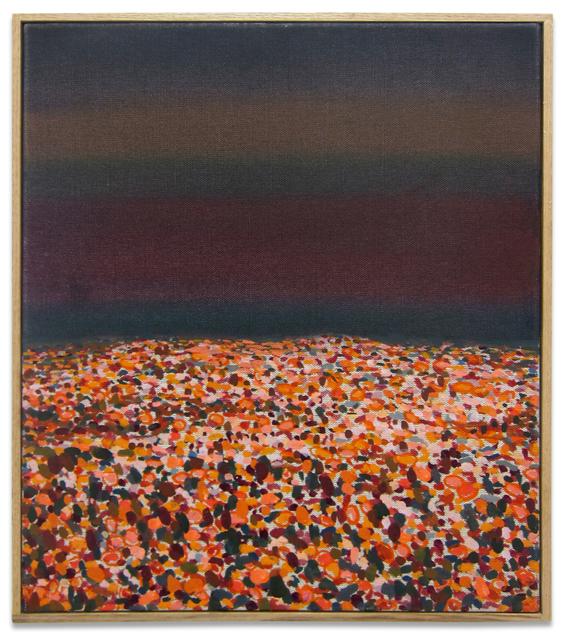 , 'Untitled (field),' 2013, Kohn Gallery