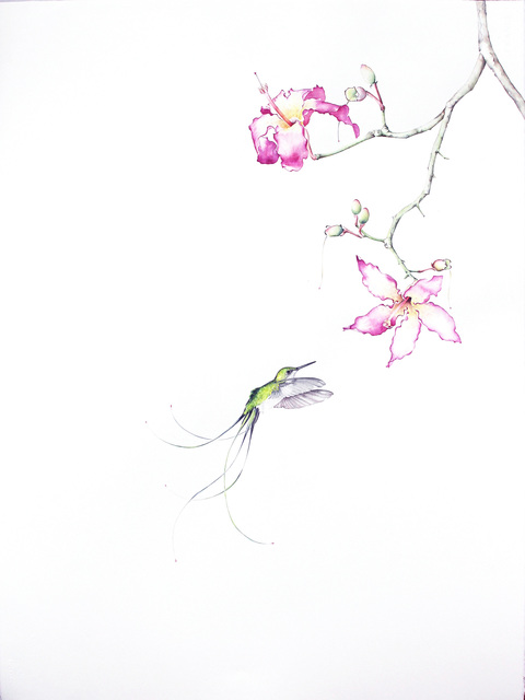 , 'Bird of Paradise #12,' 2016, Jenn Singer Gallery