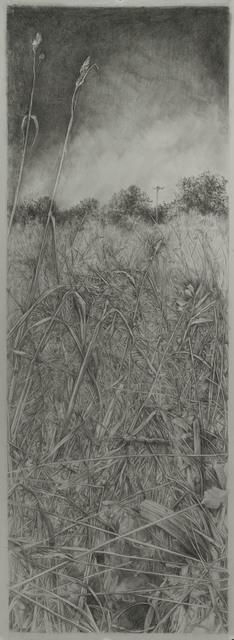 , 'Diana's Field 1,' 2018, Resource Art