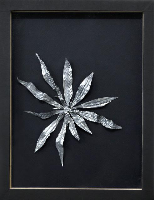 , 'Fleur de cactus plomb,' 2016, Alberta Pane