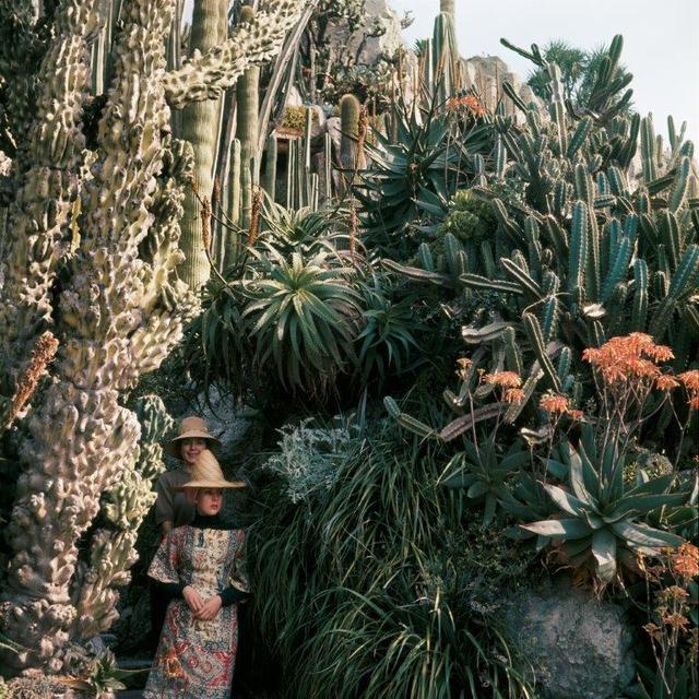 , 'Florette et Stéphanie au Jardin Exotique de Monaco,' 13, Opiom Gallery