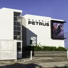 Galería Petrus