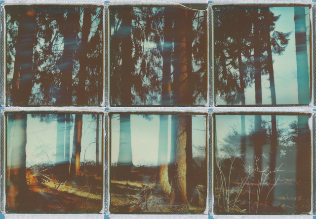 , 'I lost myself in nature - Contemporary, Conceptual, Women, Polaroid, 21st Century, Nature, Future ,' 2017, Instantdreams