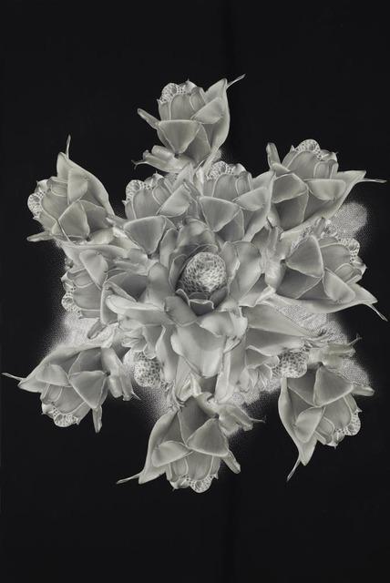 , 'Estrela XVIII,' 2013, Galeria Virgilio