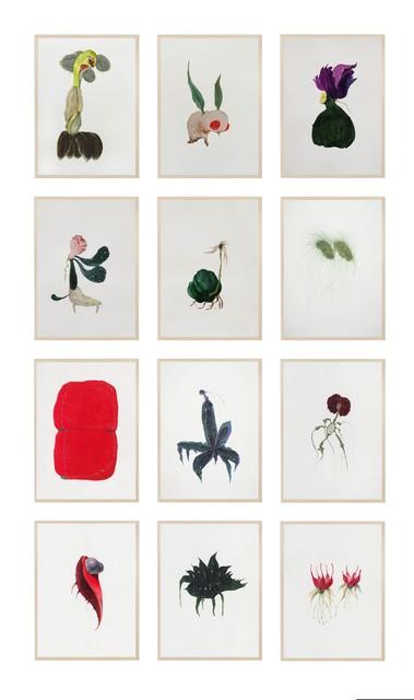 , 'Botanic Alchemy,' 2016-2018, Arario Gallery