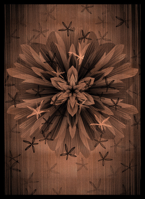 , 'Copper Star Flower,' 2016, StolenSpace Gallery