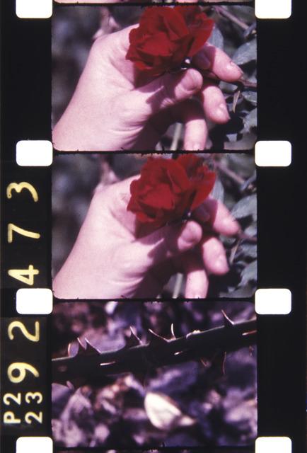 , 'Filmed on StatenIsland,1980,' 2013, Deborah Colton Gallery