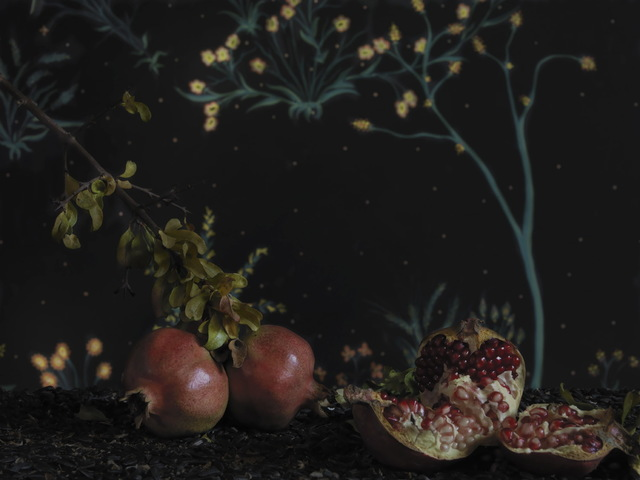Clark & Pougnaud, 'Les Grenades', 2019, Galerie XII
