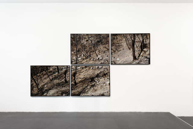 , 'Kaifa, Peloponnes, Greece (polyptych),' 2007, Circle Culture