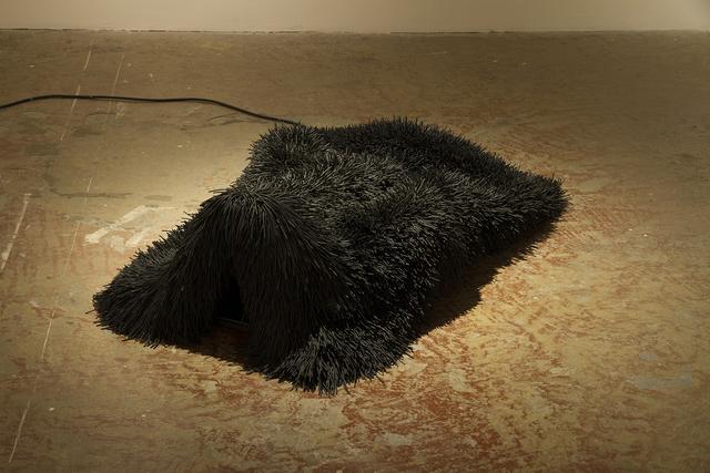 , 'Pelt 5,' 2012, Art Mûr