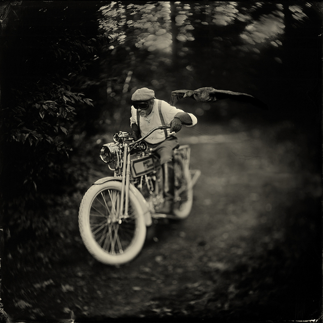 Alex Timmermans, 'Born to be wild', ca. 2018, The PhotoGallery