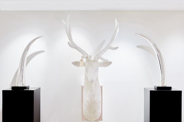 , 'Roosevelt Elk #1,' 2017, Mark Moore Fine Art