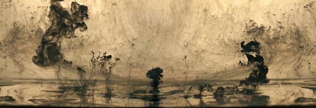 Van Chu, 'Mushrooms and Trees 24', 2016, A Gallery