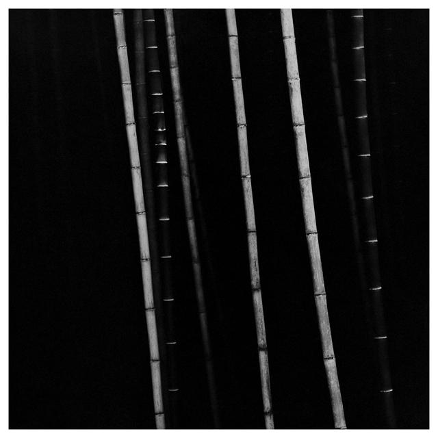 Choi Byung-Kwan, 'Bamboo Square #5', 2017, ElliottHalls