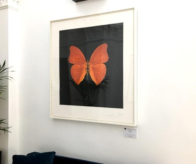 Damien Hirst, 'Memento (03 - Large Orange Butterfly)', 2007, Reuben Colley Fine Art