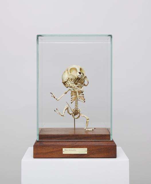 , 'Mus Animatus,' 2008, Gallery Skape