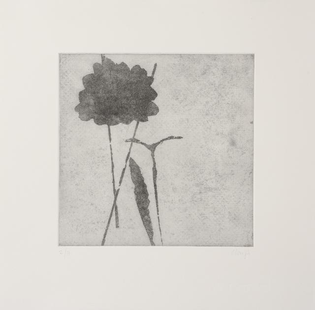 , 'Shadow Play 10,' 1992, Flowers