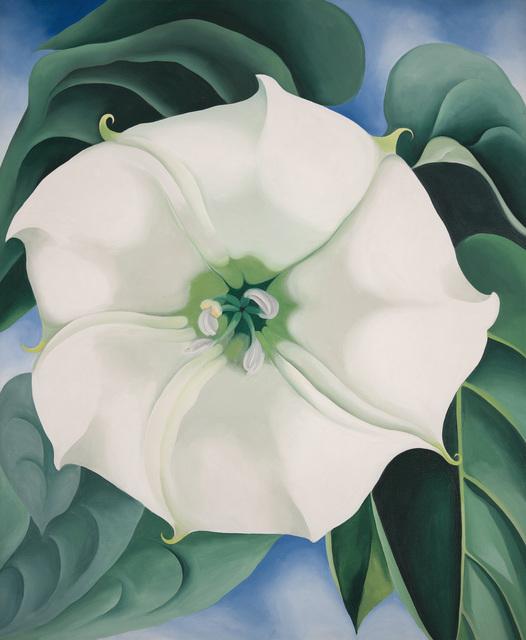 , 'Jimson Weed/White Flower No. 1,' 1932, Tate Modern