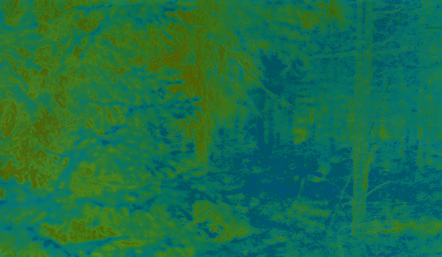 , 'Sweden 065 YBB,' 2013-2016, L. Parker Stephenson Photographs