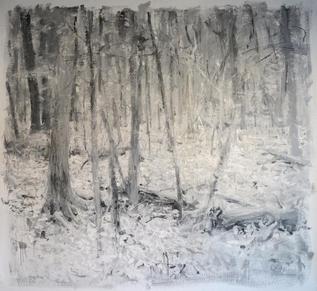 , 'Deep Woods III,' 2016, Gallery 1261
