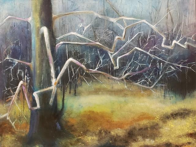 John Hayes, 'Sycamore', 2019, Springfield Art Association