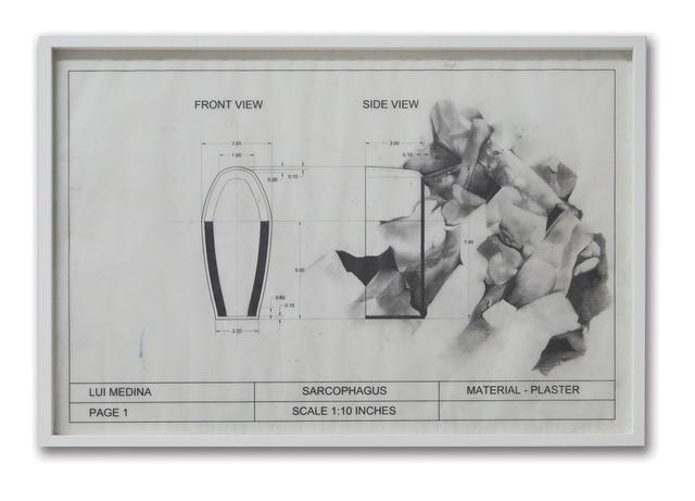 , 'Untitled (Natural History 8),' 2013, Artinformal