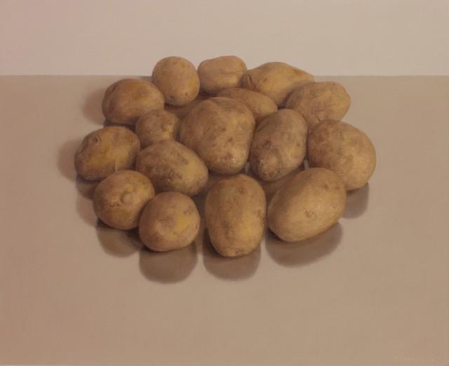 Comhghall Casey, 'Sixteen Potatoes', 2014, Alan Kluckow Fine Art