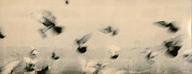 Miho Kajioka, 'BK0156', 2014, Peter Fetterman Gallery