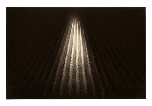 Yamamoto Masao, '1592, from Kawa=Flow', 2010, Etherton Gallery