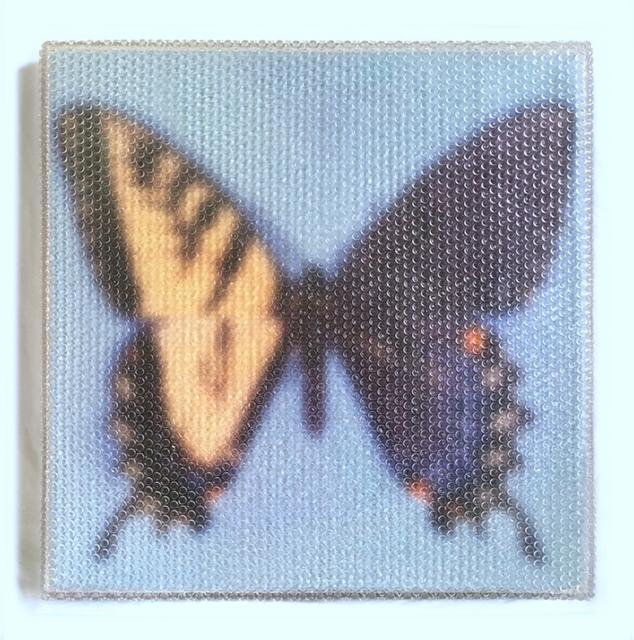 , 'Forgotten - Butterfly,' 2107, Red Gate Gallery