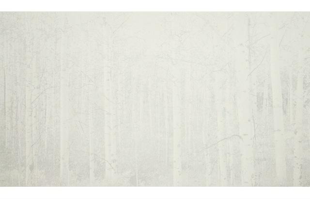 Cameron Martin, 'Balentane', 2012, Atrium Gallery