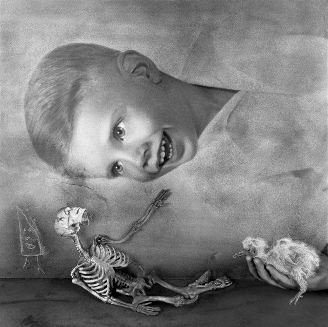 Roger Ballen, 'consolation', 2011, Stieglitz19