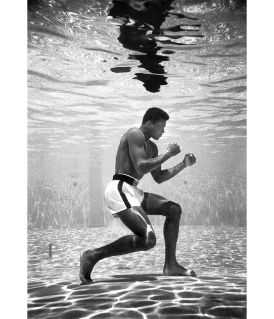 , 'Cassius Clay training in a pool at the Sir John Hotel in Miami,' 1961, G. Gibson Gallery