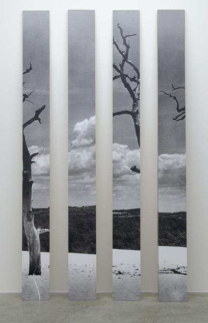 , 'Untitled,' 2012, Casey Kaplan