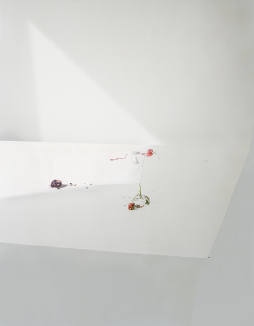 , 'Untitled #21, from the series Ill Form and Void Full,' 2011, Tracey Morgan Gallery