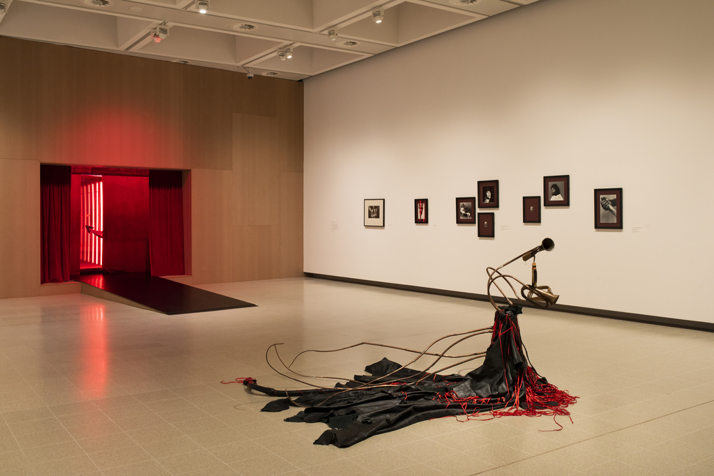 Installation view of Kiss My Genders, Hayward Gallery, courtesy of Hayward Gallery 2019. Photo: Thierry Bal.