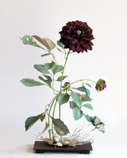 Carmen Almon, 'Dark Dahlia with Iphiclide Moth', 2019, Octavia Art Gallery