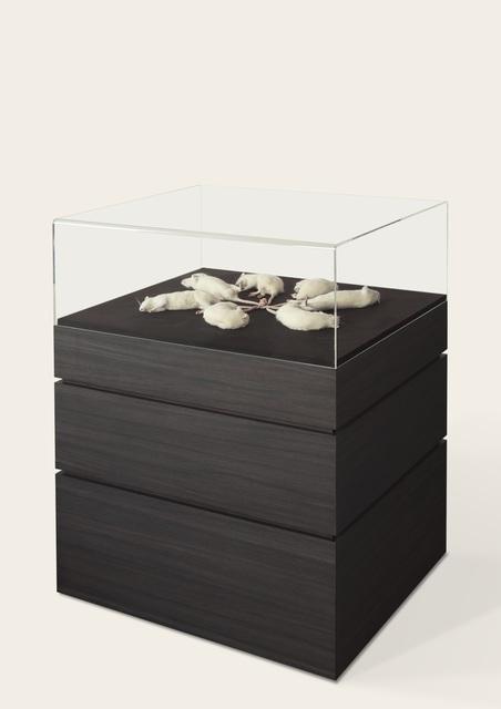 , 'Enigma,' 2015, Galerie Ron Mandos