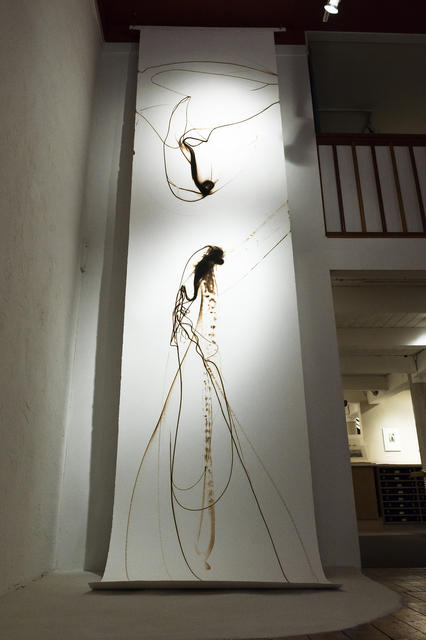 , 'Trace 11811,' 2011, Winston Wächter Fine Art