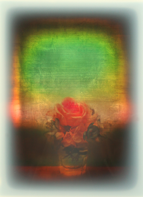 , 'Rosa Rugosa,' 2019, Galerie Andreas Binder