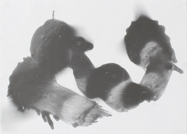 Richard Neal, 'Graphite piece', 2009, Park Place Gallery