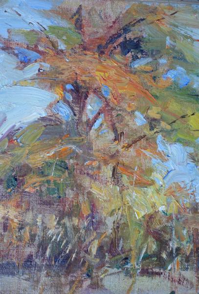 , 'Tall Cypress ,' 2014, Wally Workman Gallery