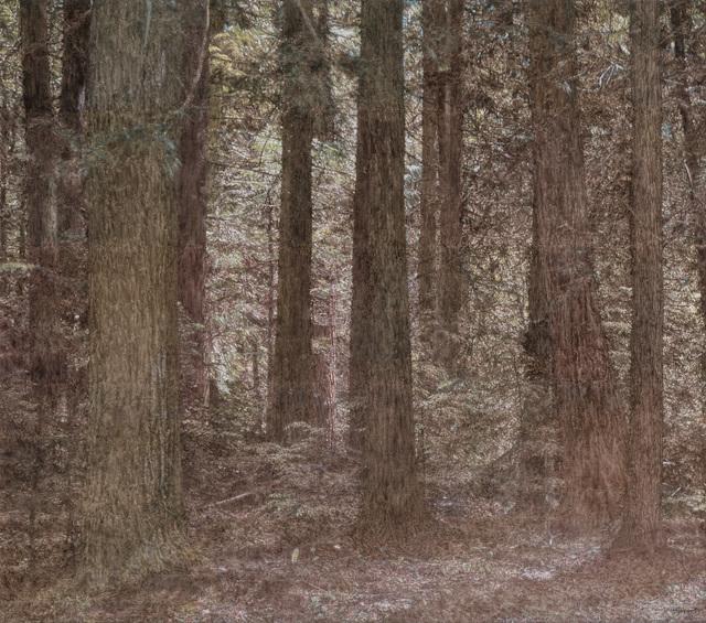 , 'Solstice Woods,' 2017, Moskowitz Bayse