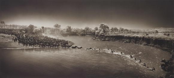 Nick Brandt, 'Zebras crossing river, Maasai Mara,' 2006, Phillips: Photographs