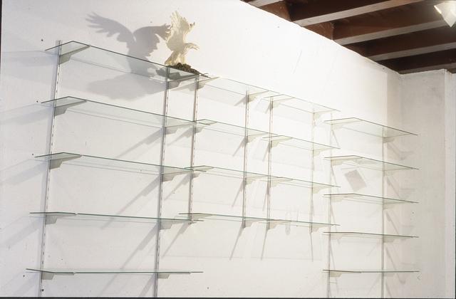 , 'Paisajes endémicos,' 1989, Formatocomodo