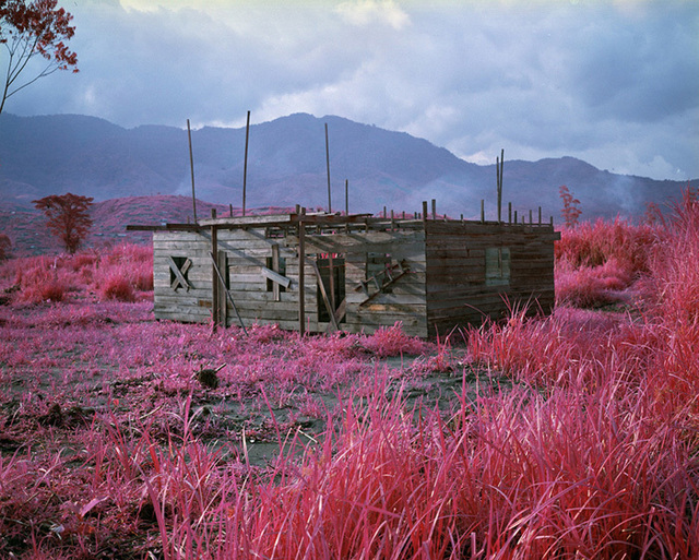 Richard Mosse, 'Come Out (1966) X', 2011, carlier | gebauer